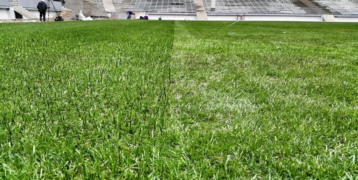 Гибридное покрытие GrassMaster